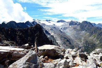 Trekking w Dolomitach Brenta. Grupa Presanella